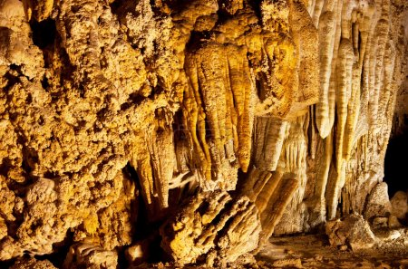 Carlsbad Caverns National Park in USA...