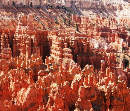 Bryce canyons cliff