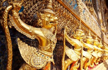 Golden Goruga