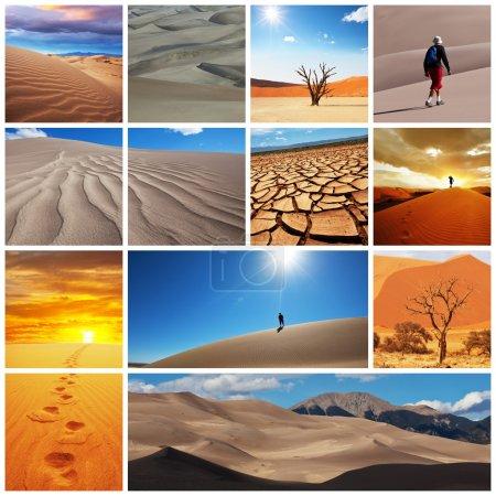 Foto de Desierto de Gobi - Imagen libre de derechos
