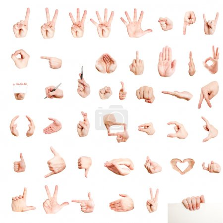 Photo for Many different hand signs isolated on white - Royalty Free Image