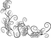 The background of Grape vine