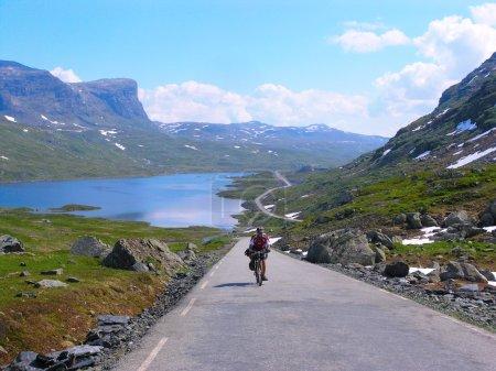 Photo pour VTT cycliste masculin montant le long d'une route de campagne ; journée d'été dégagée - image libre de droit