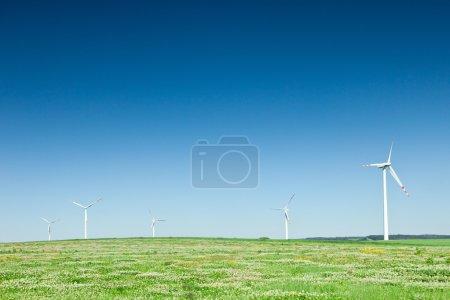 Group of wind turbines on green field