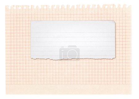Photo pour Bannière en papier isolée sur blanc, aux bords sont arrachés et effilochés - image libre de droit