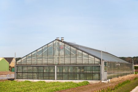 Greenhouse from glass exterior for agriculture in ...