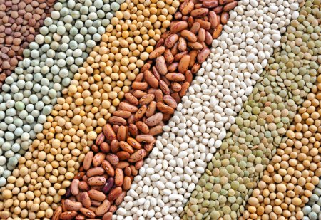 Photo for Mixture of dried lentils, peas, soybeans, beans - background - Royalty Free Image