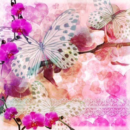 Photo for Butterflies and orchids flowers pink background with lace ( 1 of set) - Royalty Free Image