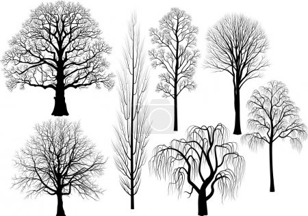 Illustration pour Collection d'arbres en noir - image libre de droit