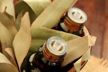 Photo pour Fermer les bouteilles d'huile essentielle et les feuilles de gomme (feuille d'eucalyptus) ) - image libre de droit