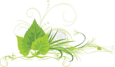 Illustration pour Feuilles de bouleau avec herbe et ornement décoratif. Illustration vectorielle - image libre de droit