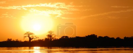Photo pour Paysage africain, Sénégal, sine saloum - image libre de droit