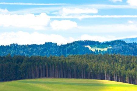 Photo pour Paysage des Alpes d'été : Forêt et collines. Plan horizontal - image libre de droit