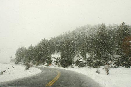 Photo pour Conduite par mauvais temps sur route enneigée. vue intérieure de voiture - image libre de droit