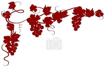 Illustration pour Eléments de design avec feuilles de vigne et raisins - image libre de droit