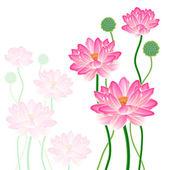 Realistic Oriental lotus