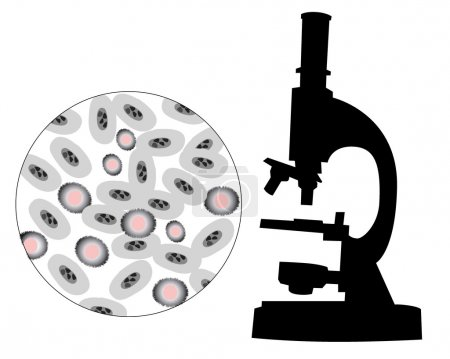 Illustration for Silhouette of a microscope with the image of bacteria on a white background - Royalty Free Image