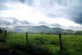 Brazilian Mountains