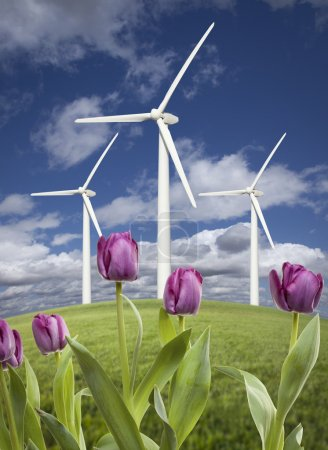 Wind Turbines Against Dramatic Sky, Clouds and Violets