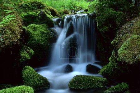 Photo pour Beau paysage d'eau courante du ruisseau de montagne - image libre de droit