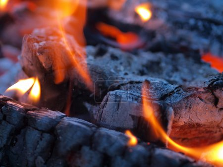 Background of Flames and Glowing Embers in a Campfire