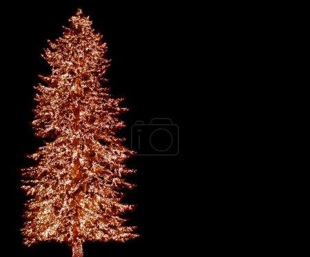 Photo pour Un grand arbre à feuilles persistantes est orné de haut en bas avec les lumières de Noël - image libre de droit