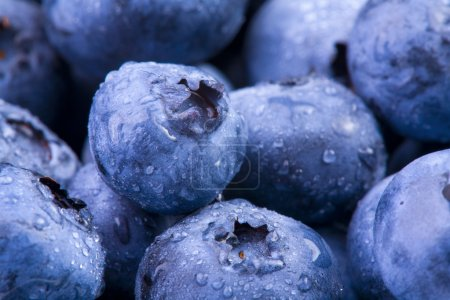 Photo for Extreme closeup of fresh blueberries with water droplets - Royalty Free Image