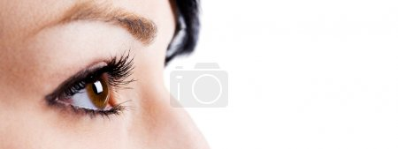 Photo for A closeup shot of the eyes of a businesswoman - Royalty Free Image
