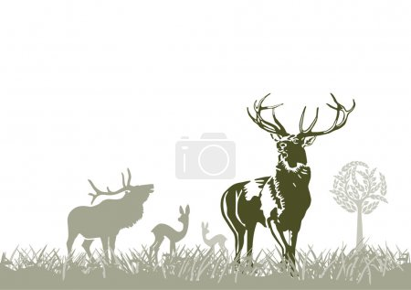 Illustration for Wild animal, deers - Royalty Free Image