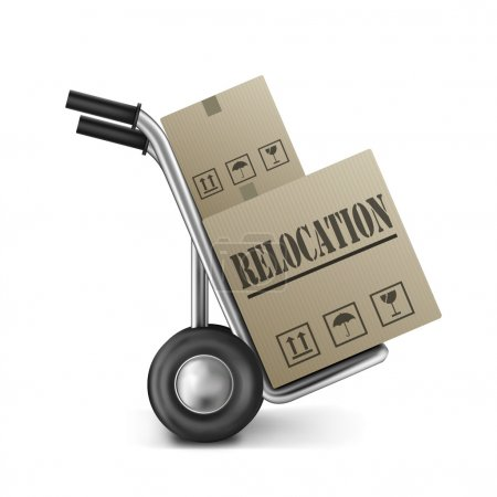 Relocation cardboard box