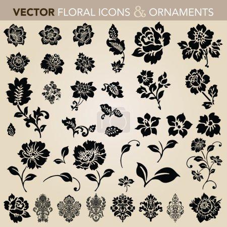 Illustration for Background, flower, floral, rose, wedding, design, element, decor, vintage, botany, flores, icon, illustration - Royalty Free Image