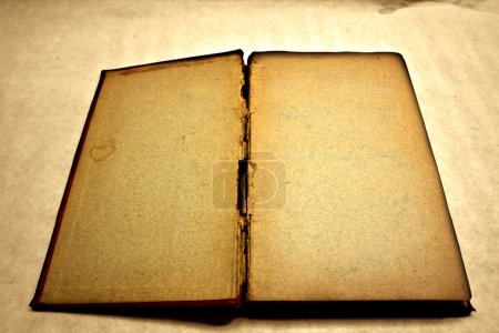 Photo for Blank and antique open book (vintage version) - Royalty Free Image