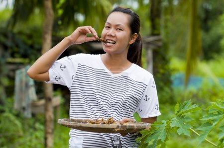 Photo pour Femme de fermier asiatique manger des sauterelles frites - image libre de droit