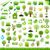 Collection Eco Design Elements Isolated On White Background Vector Illustration