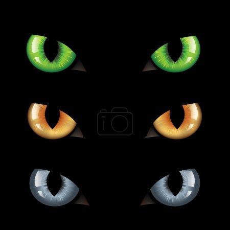 Illustration for 3 Wild Cat Eyes, On Black Background, Vector Illustration - Royalty Free Image