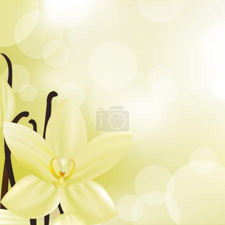 Illustration pour Fleur de vanille, Illustration vectorielle - image libre de droit
