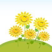 Slunečnice šťastný žluté jaro na zahradě