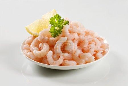 Photo pour Tas de crevettes décortiquées dans une assiette - image libre de droit