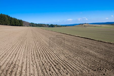 Arable land, forests and hill.