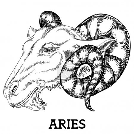 Illustration for Aries zodiac sign - Royalty Free Image