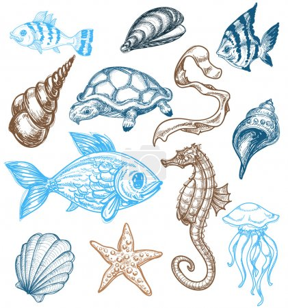 Marine life collection
