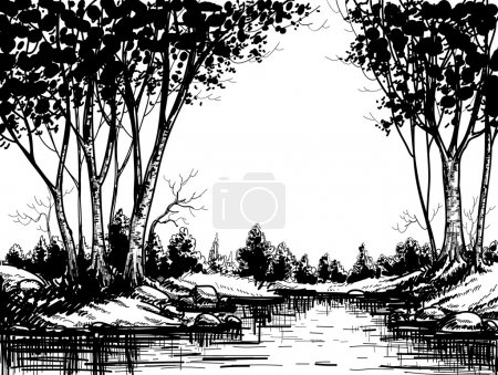 Lake in the birch forest