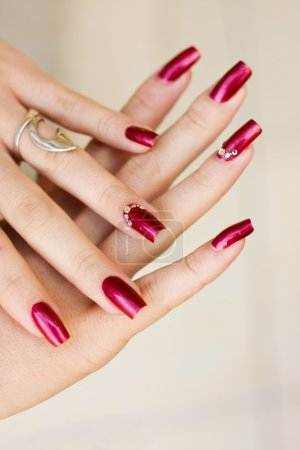Photo for Woman manicure arranged - Royalty Free Image