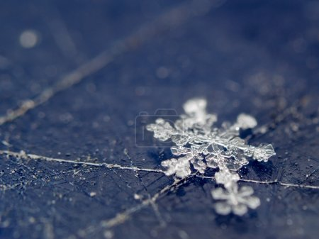 Photo for Macro shot of single snowflake on scratched plastic surface - Royalty Free Image