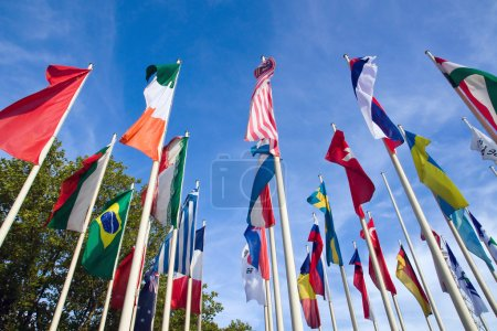Photo pour Drapeaux internationaux avec des arbres et un ciel bleu en arrière-plan - image libre de droit
