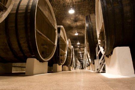 Photo pour Grands tonneaux de vin avec 20,5 milliers de litres de vin . - image libre de droit