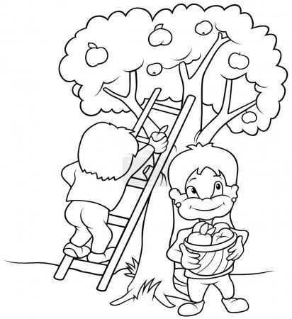 Children's Harvesting Fruits