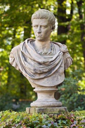 Roman emperor Caligula.