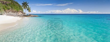 Photo for Desert island panorama with palm trees on the beach - Royalty Free Image