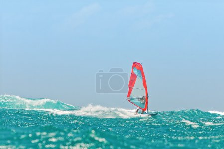 Photo for Windsurfing champion playing in the waves - Royalty Free Image